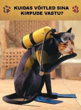 Advantage-cat-EST