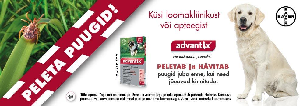 Advantix-bännerid_995-x-350_staatiline_