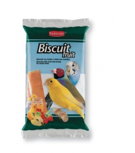 biscuit-fruit