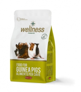 wellness-food-for-guinea-pigs-1kg