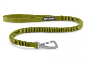 4050_RidgelineLeash_ForestGreen_Zoom