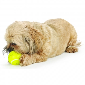TennisBall_main-2