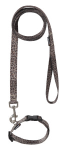 wonder collar leash set 20mm col.191 leopard