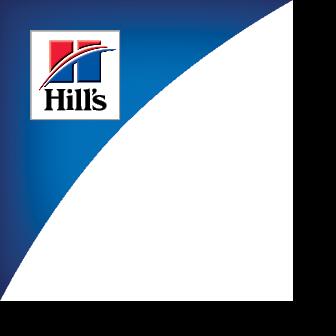 Kampaania logo